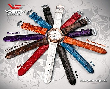 Watchband for Ladies Watches